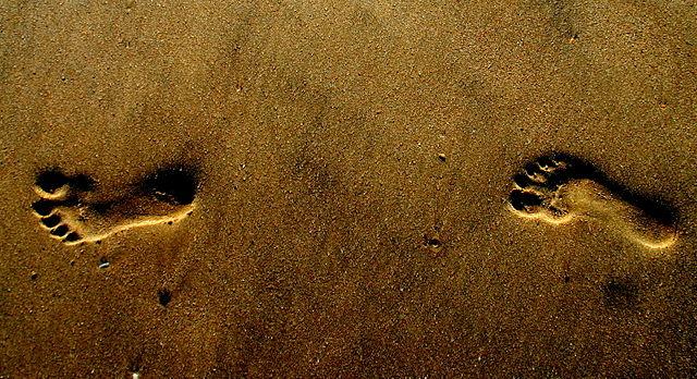 Foot Steps on Beach - photo by Augustus Binu