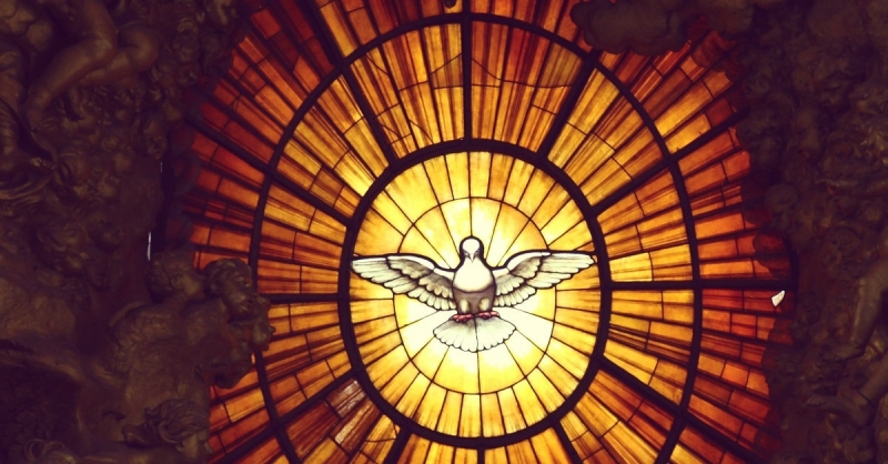 Dove on stained glass