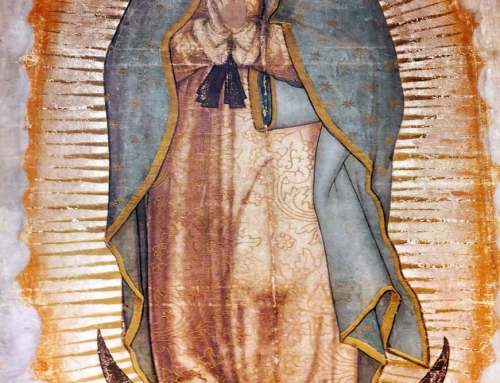 Consolation of Our Lady of Guadalupe